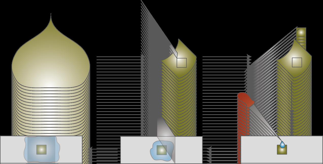 Die Zelle: Das Mikroskop