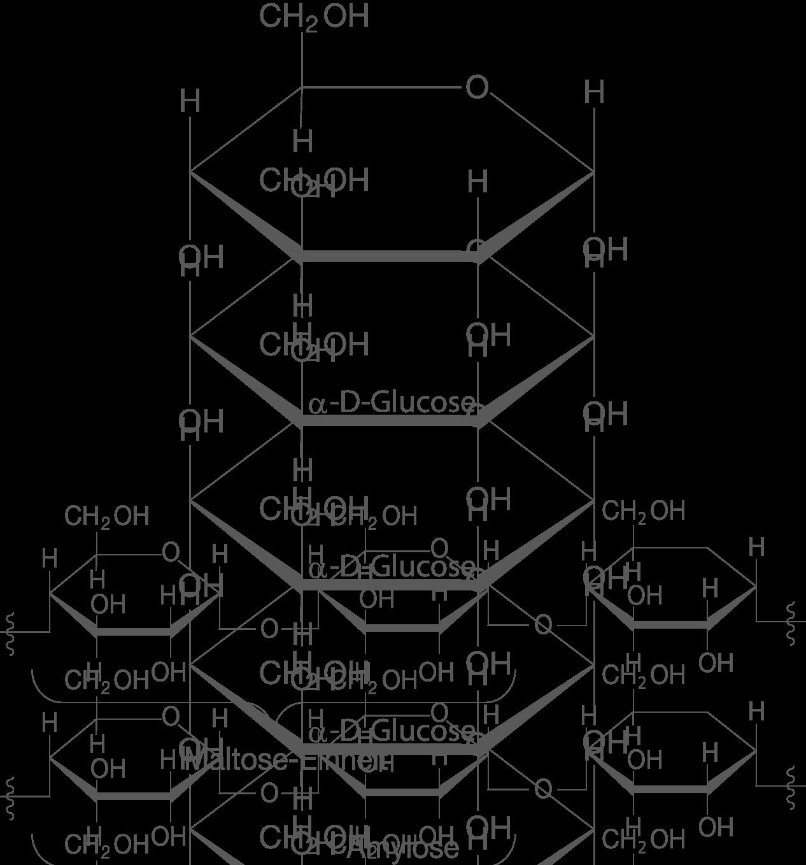 Naturstoffe: Polysaccharide