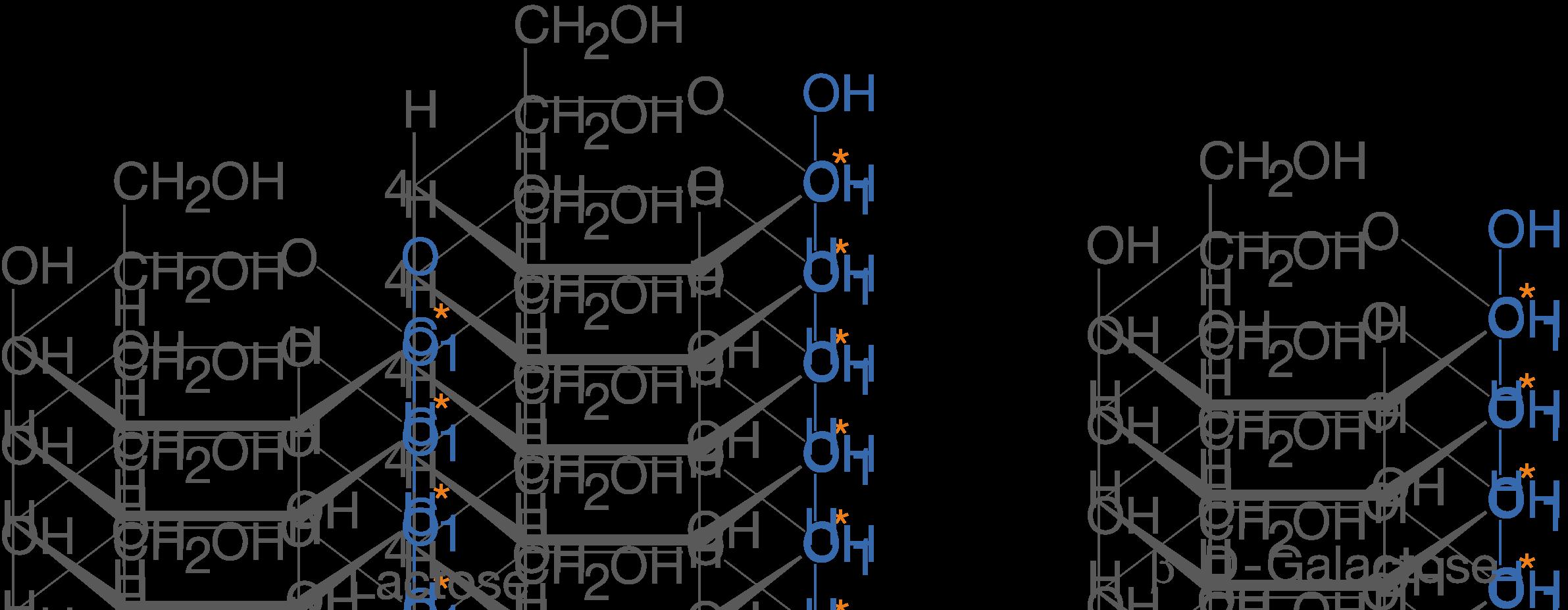 Disaccharide Naturstoffe Chemie Digitales Schulbuch Skripte