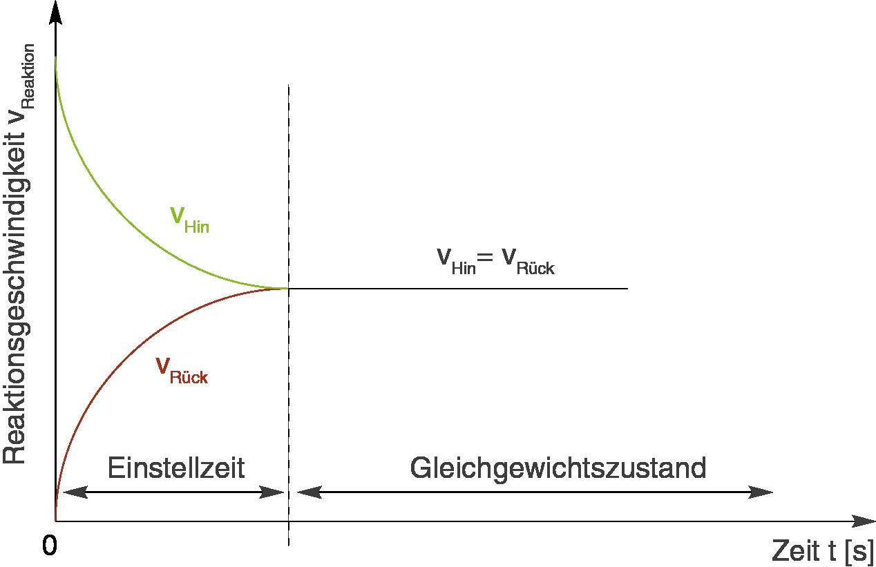 Chemische Gleichgewichte: Massenwirkungsgesetz