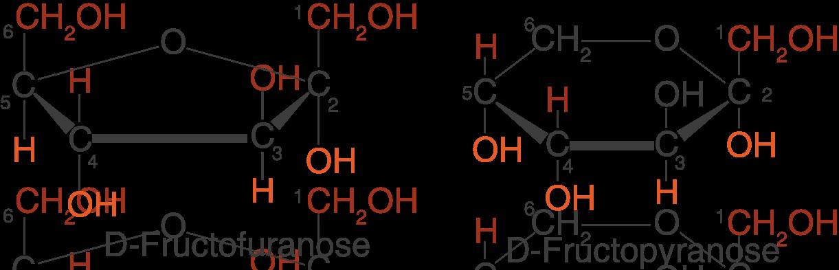 L Fructopyranose Monosaccharide - Natur...
