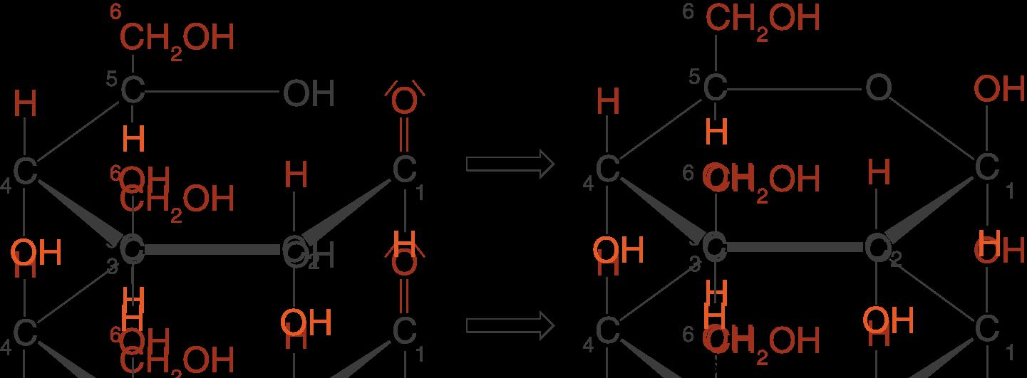 Naturstoffe: Monosaccharide