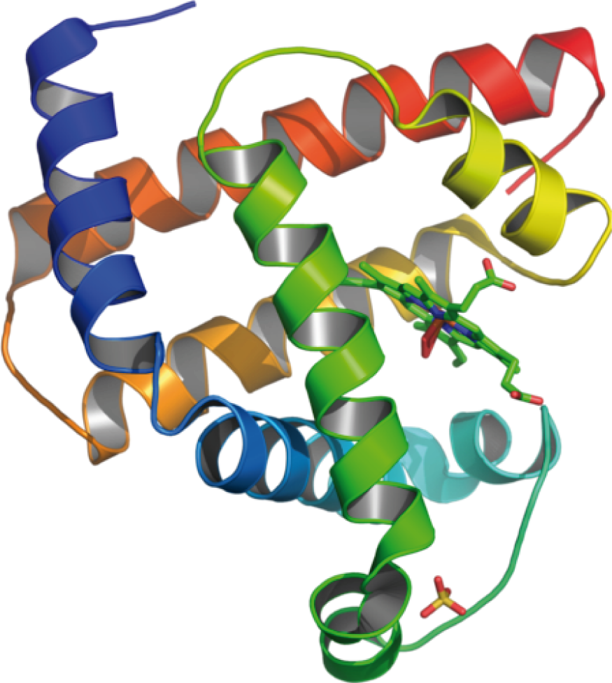 Naturstoffe: Peptide und Proteine
