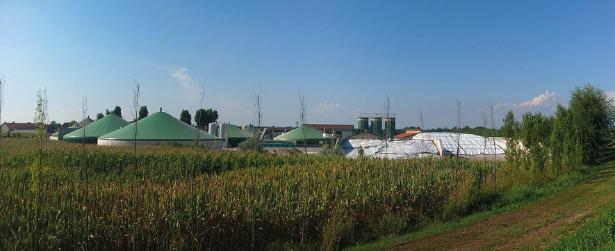 Kohlenwasserstoffe: Kohlenwasserstoffe als Energieträger