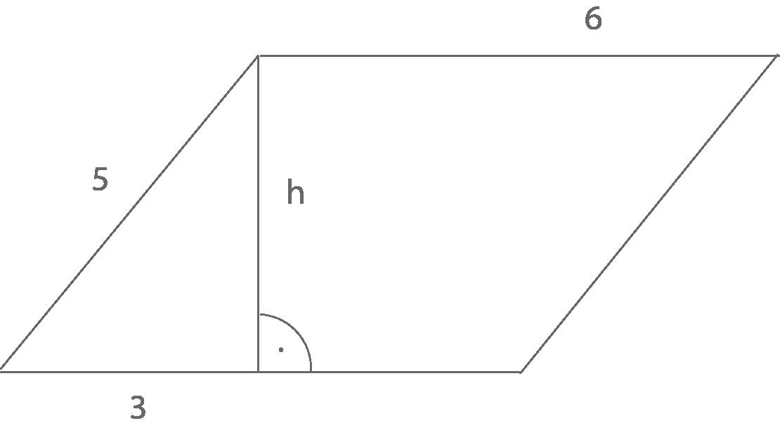 Flächeninhalt und Umfang: Trapez